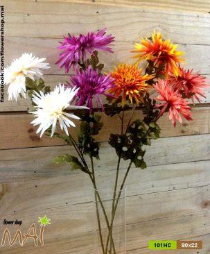 Hoa cúc tia 101HC