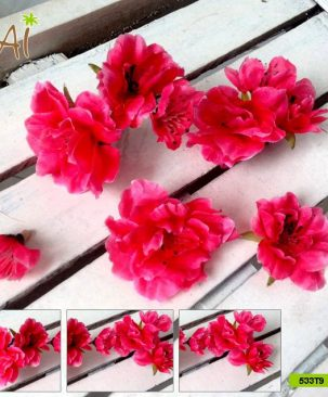 Hoa đào đỏ 533T9