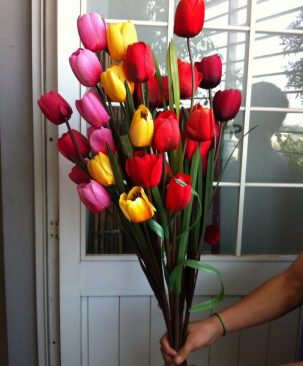 Cành Tulip 413HC