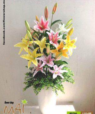 Bình hoa ly 602HL