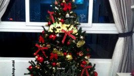 Hướng dẫn các bước trang trí cây thông Noel
