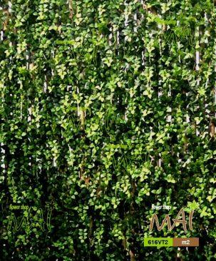 Mảng xanh 616VT2 - vườn đứng