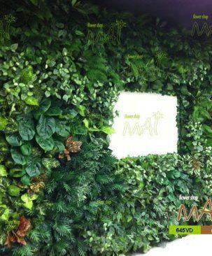 Vườn đứng 645VD