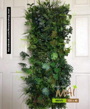 Mảng thực vật 660VD