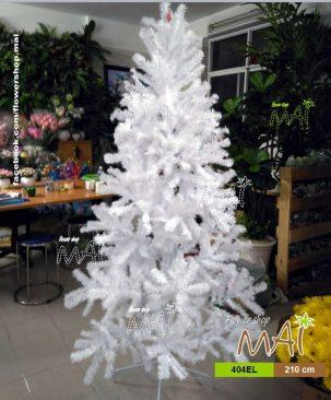 Cây thông trắng 404EL