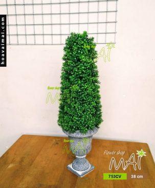 Chậu cỏ bonsai 753CV