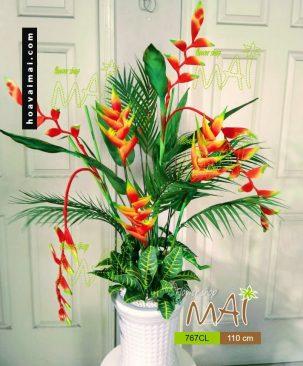 Hoa nhiệt đới 767CL